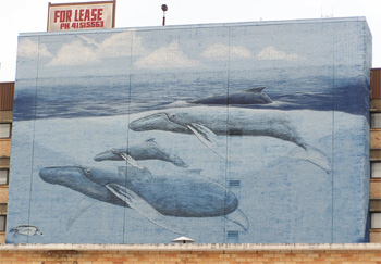 Whaling_wall