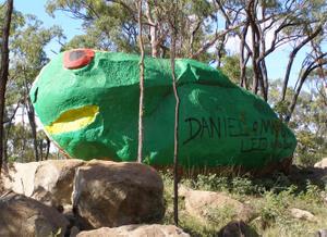 Giant North Queensland Green Tree Frog